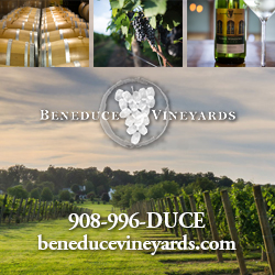 Beneduce Vineyards Top Attractions Hunterdon County NJ