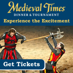 Medieval Times Fun Attraction NJ