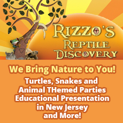Rizzo's Wildlife Discovery Childrens Party Places NJ